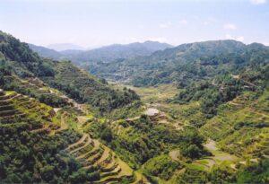 Terrazzamenti di Banaue
